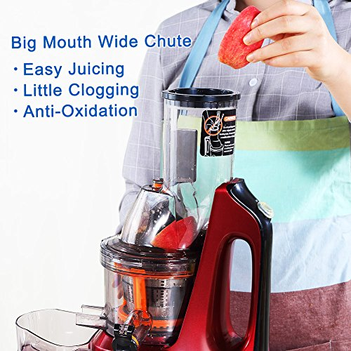 SKG New Generation Slow Masticating Juicer